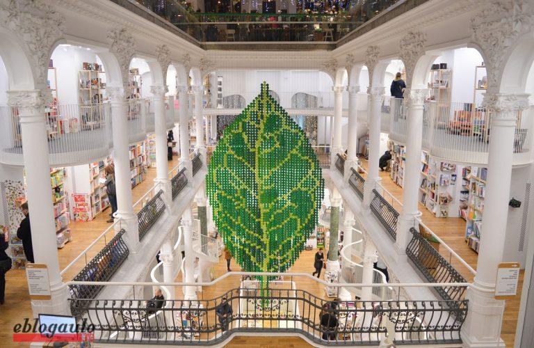 TROPHIC @Cărturești Carusel: o instalație artistică vorbește despre echilibrul naturii